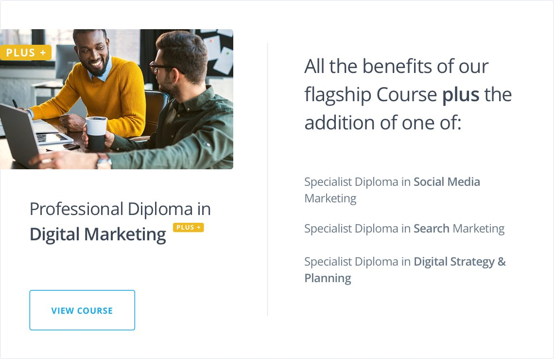 Professional Diploma in Digital Marketing Plus