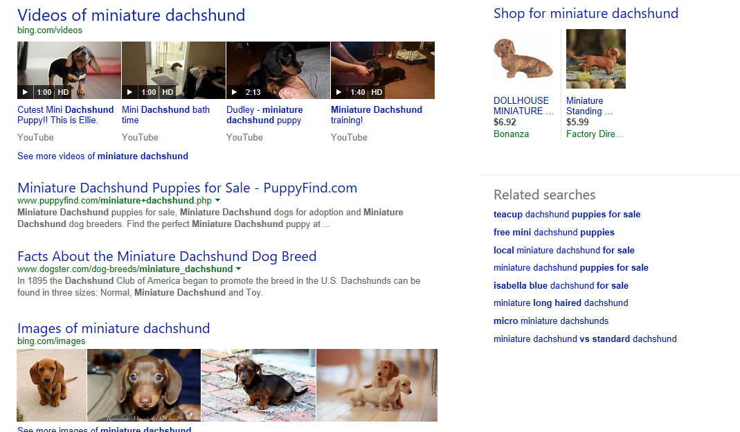 "Take this example search for ""miniature dachshund,"" performed in a private window."