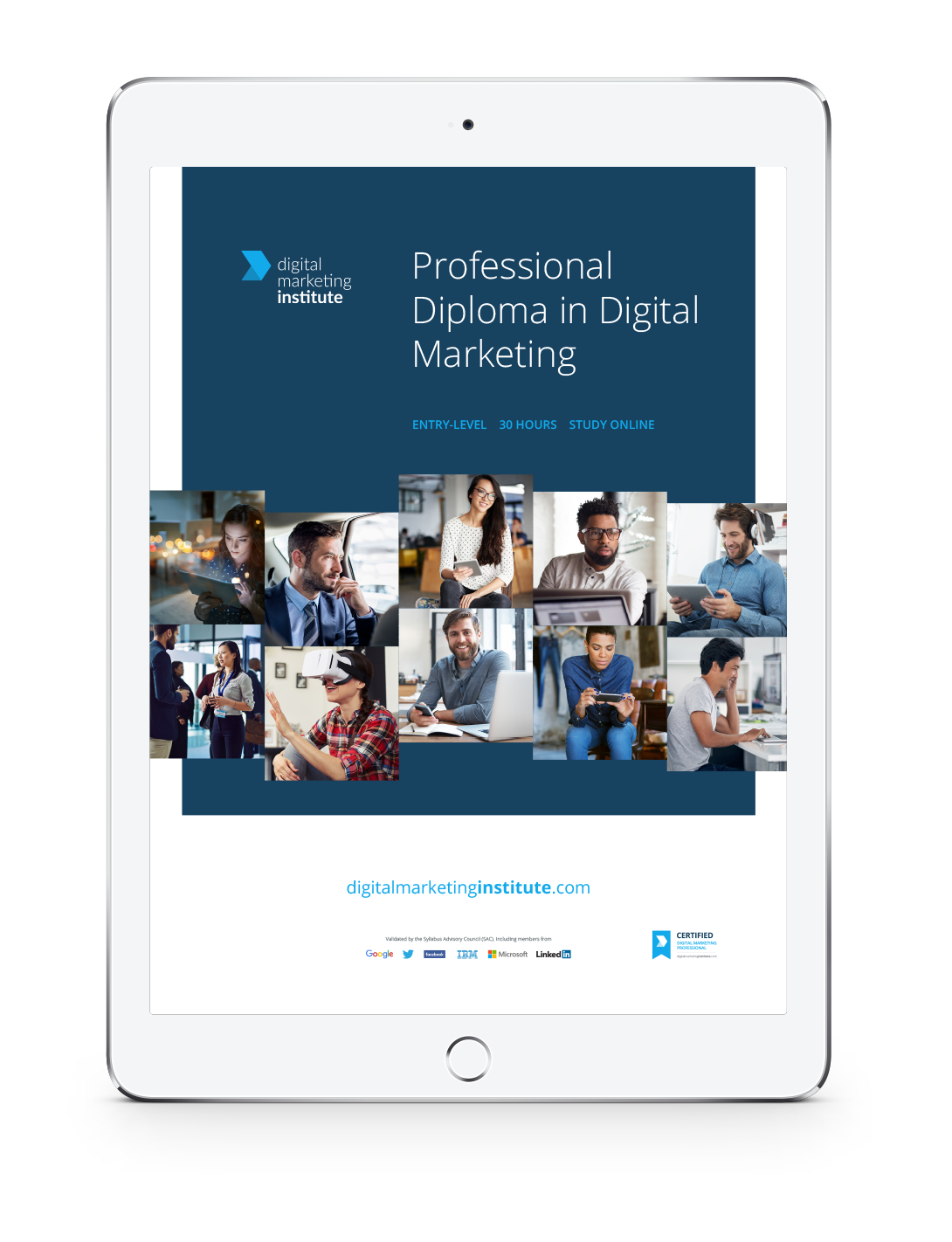 Digital Marketing Institute Course Brochure image