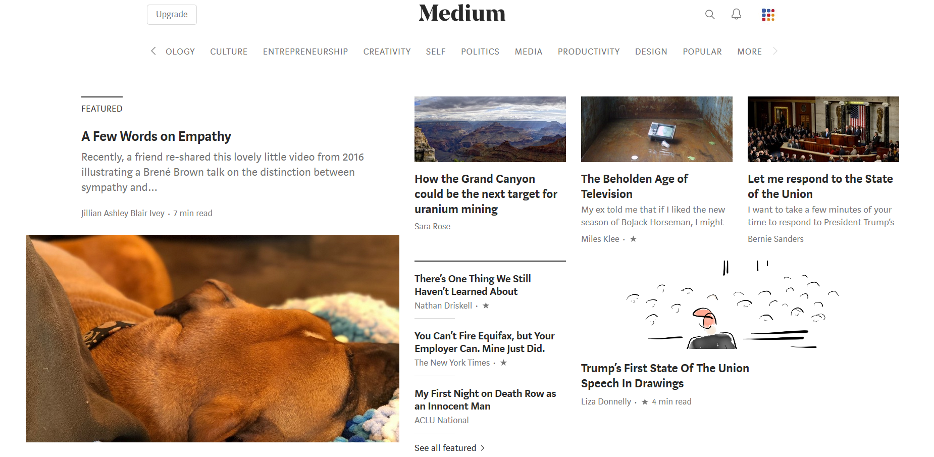 Medium content marketing platform.